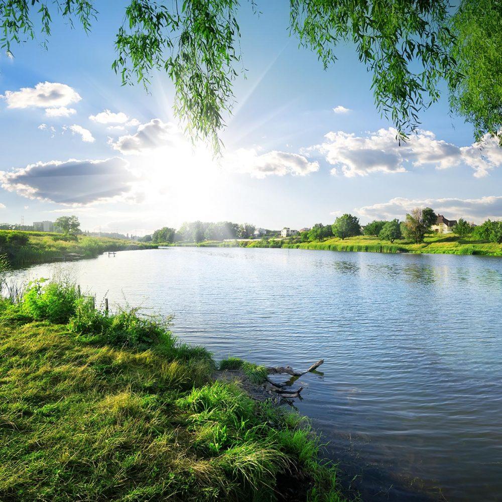 photo of a pond